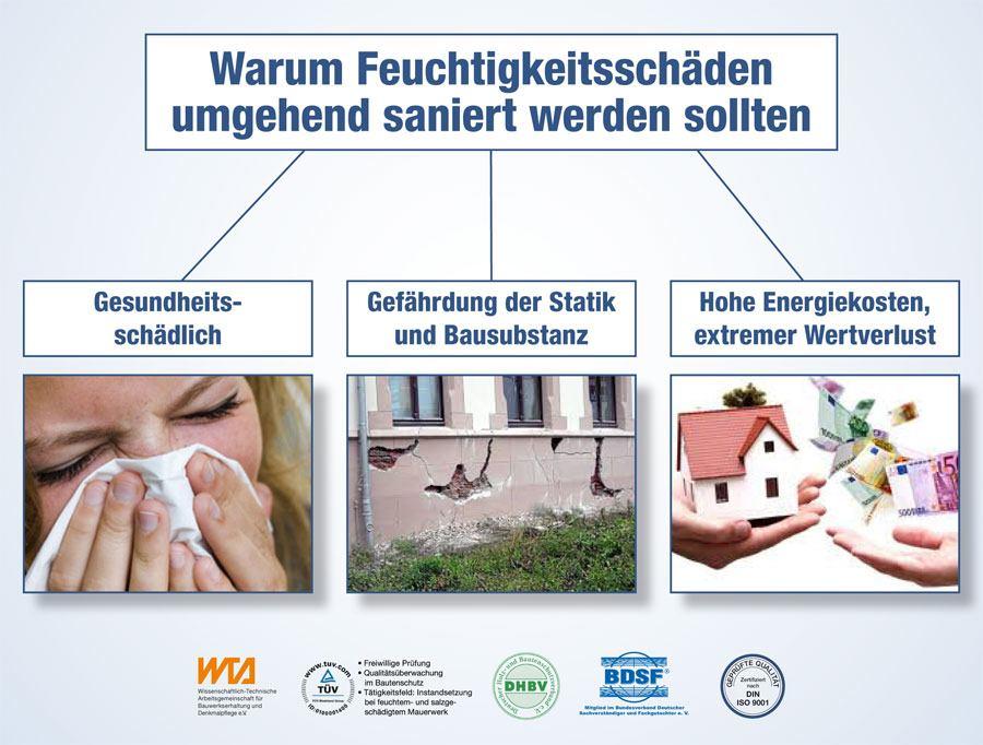 Infografik: Warum Feuchtigkeitsschäden umgehend saniert werden sollten