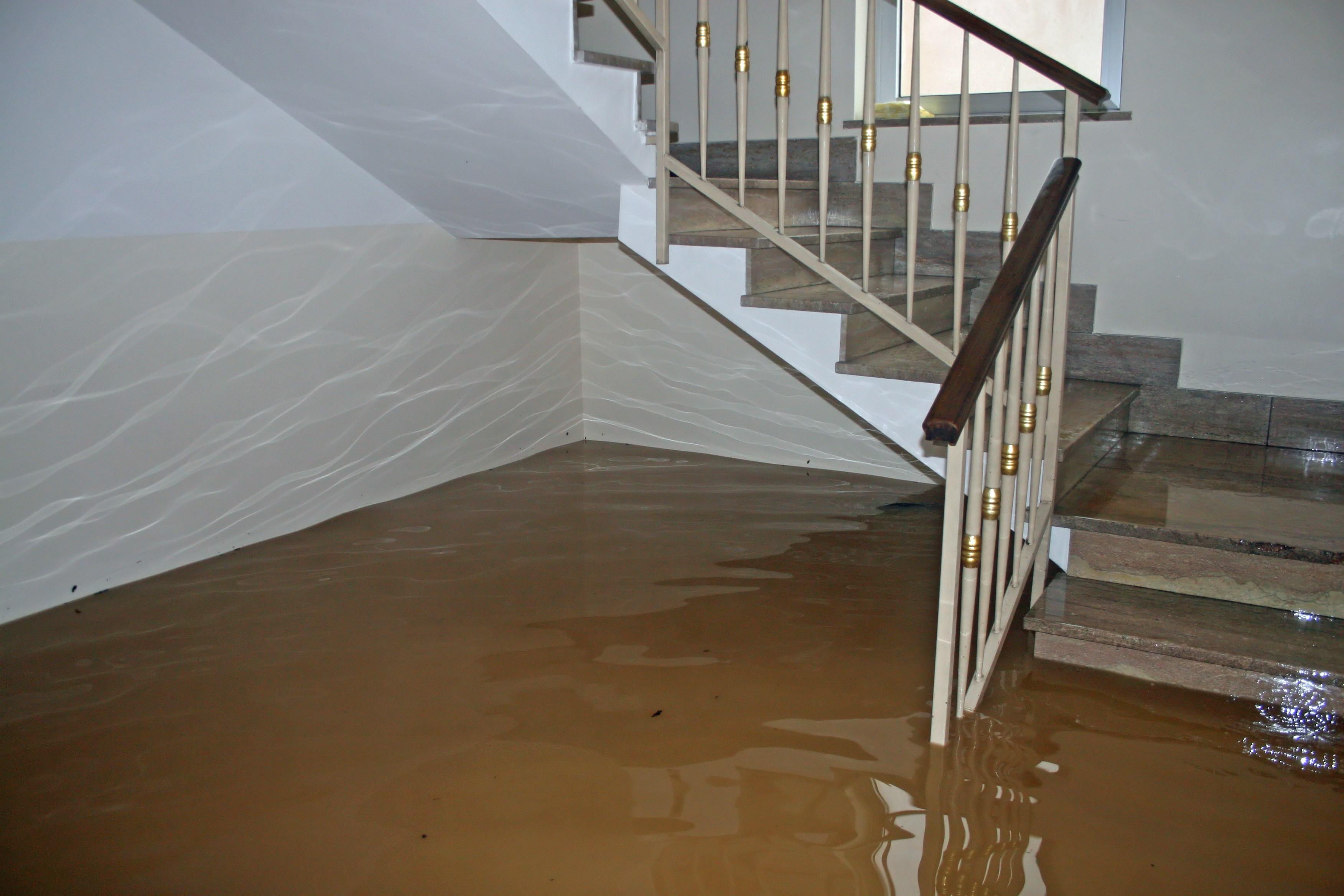 wasserschaden wann bernimmt versicherung die kosten