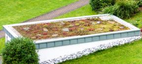 Die Dachbegrünung bietet vielfältige Gestaltungsmöglichkeiten