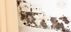 bauwerksabdichtung vom profi rund um hannover braunschweig. Black Bedroom Furniture Sets. Home Design Ideas