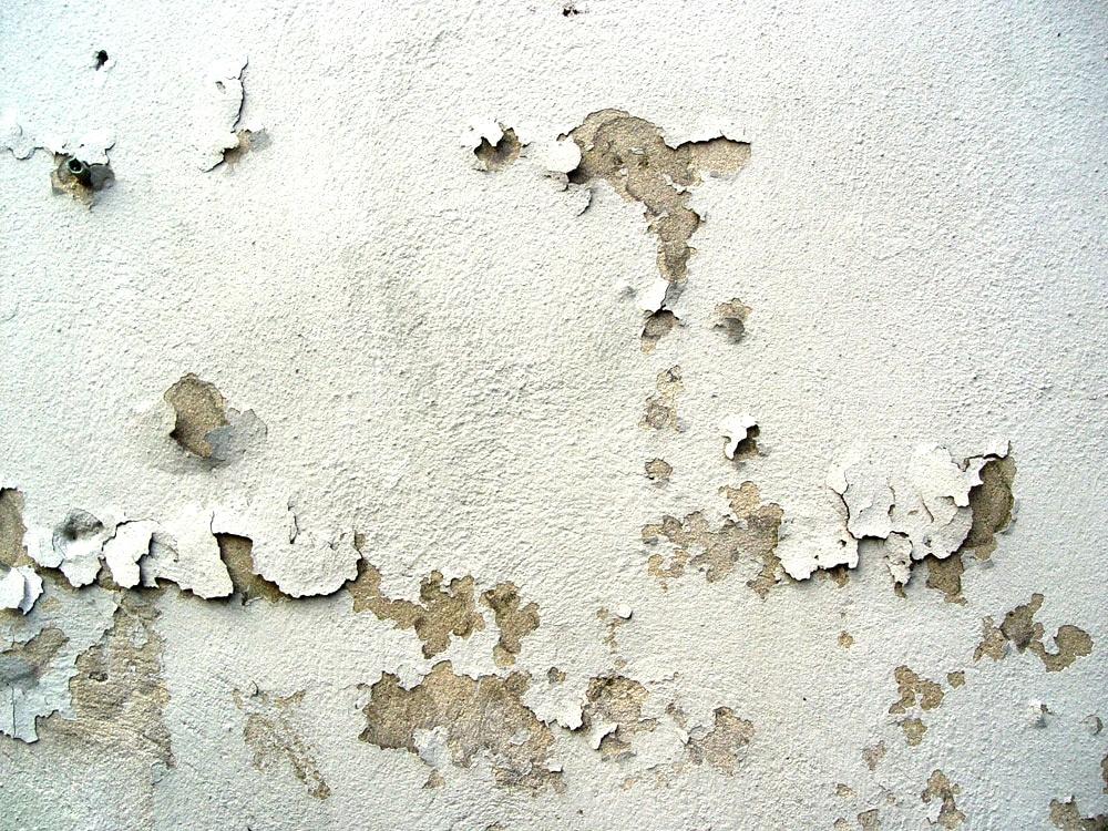 Abplatzender Wandputz